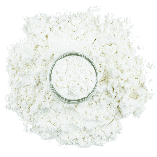 blue-cheese-powder-3.png|algolia