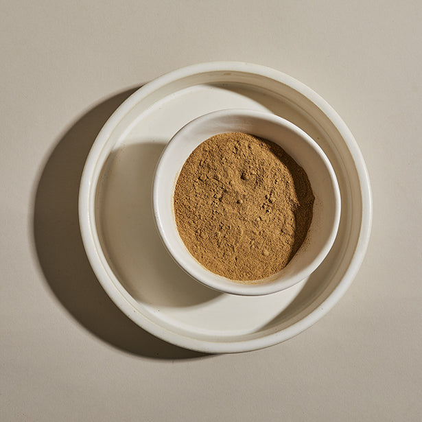 Porcini mushroom powder in a bowl.