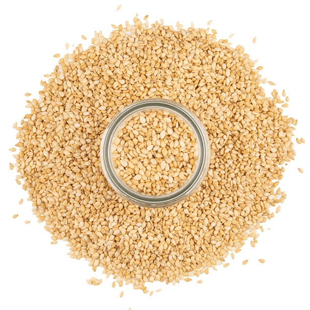 toasted-sesame-seeds-3.png|algolia