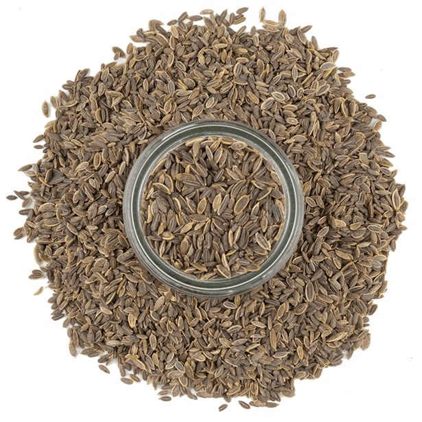dill-seeds-3.png|algolia