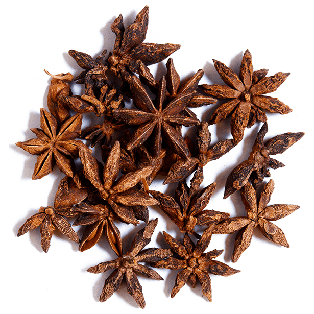 star-anise-pieces-3.png|algolia