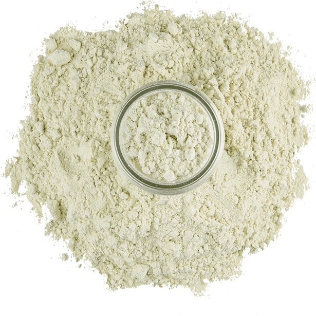 pure-wasabi-powder-3.png|algolia