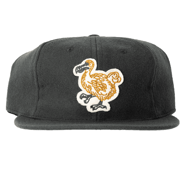Limited Edition Explorer's Cap