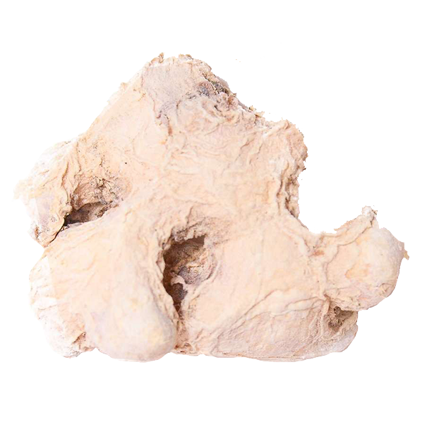 peeled-ginger-root-3.png|algolia
