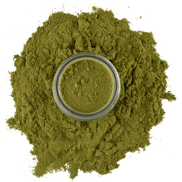 turkish-bay-leaves-powdered-3.png|algolia