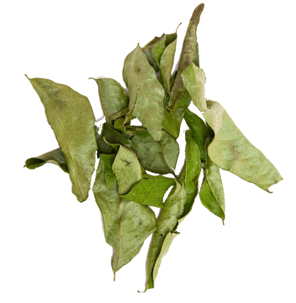 dried-curry-leaves-3.png|algolia