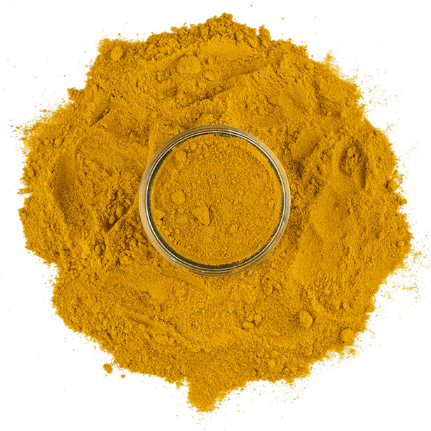 turmeric-organically-sourced-3.png|algolia