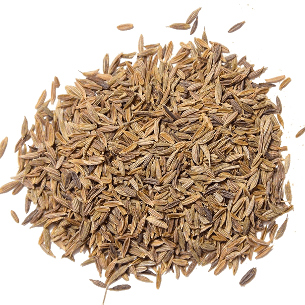 cumin-seeds-organically-sourced-3.png|algolia