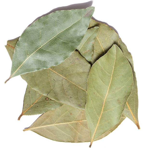 turkish-bay-leaves-3.png|algolia