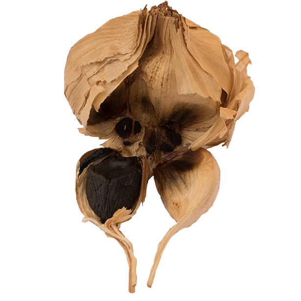 black-garlic-bulbs-3.png|algolia