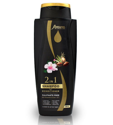 2 IN 1 SHAMPOO & CONDITIONER SULPHATE FREE