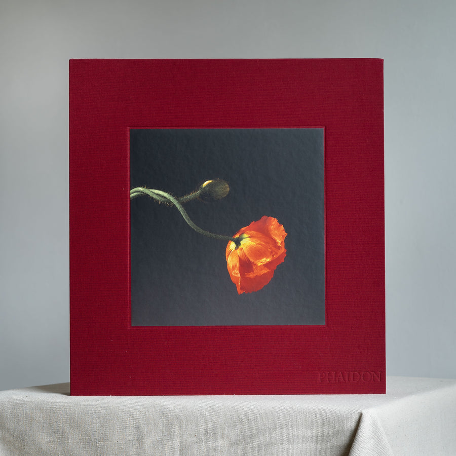 Mapplethorpe Flora: The Complete Flowers