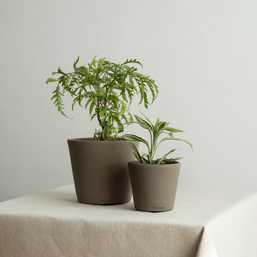 Small Khaki Green Painted Plant Pot