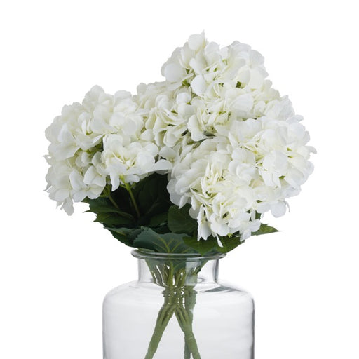 Hill Cream Hydrangea Bouquet