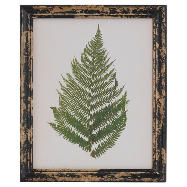 Hill Rustic Framed Botanical Fern Picture