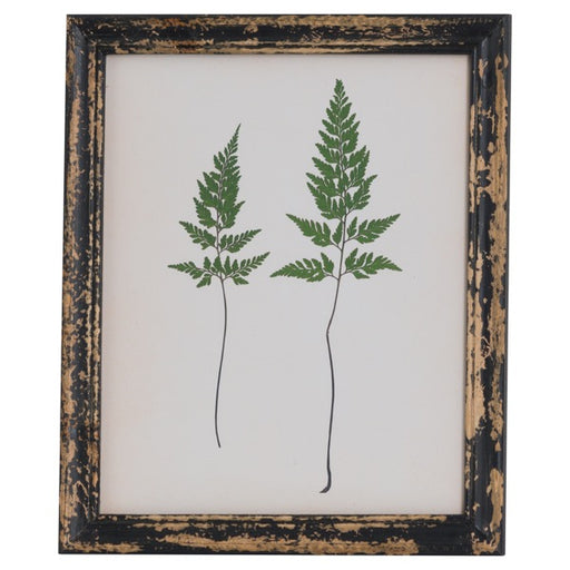 Hill Rustic Framed Botanical Pair Of Ferns Picture
