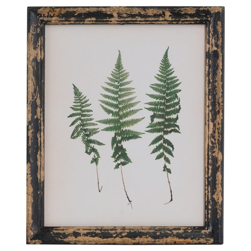 Hill Rustic Framed Botanical Triple Fern Picture