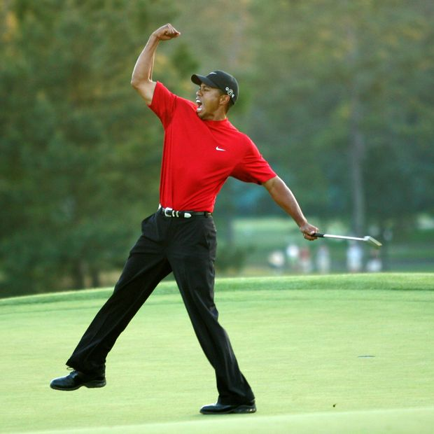 Wall Street Journal's Image of Tiger Woods