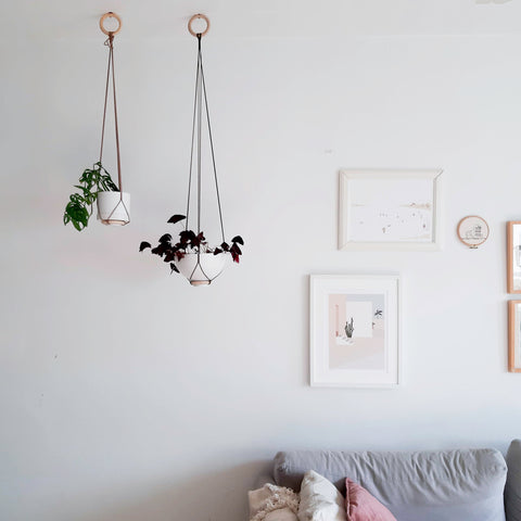New Hanging Planters