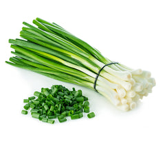 ONION SCALLIONS FROM MEXICO