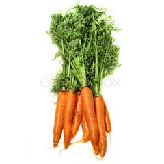 CARROT BUNCH FROM USA