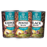 EDEN ORGANIC GREAT NORTHERN BEANS
