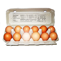 SUNSHINE FARM  ORGANIC JUMBO BROWN EGGS