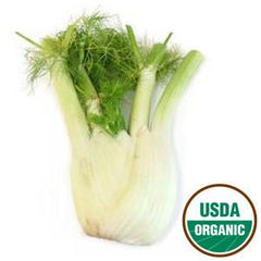 FENNEL ORGANIC FROM USA