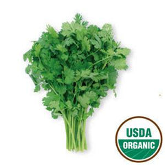 ORGANIC CILANTRO FROM USA