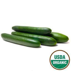 ORGANIC CUCUMBER ENGLISH FROM MEXICO
