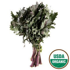 ORGANIC RED KALE FROM USA