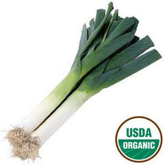 ORGANIC LEEKS FROM USA