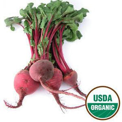 ORGANIC RED BEET BUNCH FROM USA