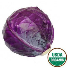 ORGANIC RED CABBAGE FROM USA