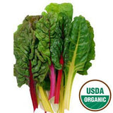 ORGANIC SWISS CHARD FROM USA
