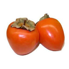 PERSIMMONS HACHIYA FROM USA