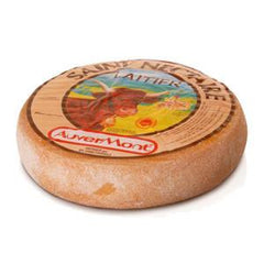 SAINT NECTAIRE CHEESE