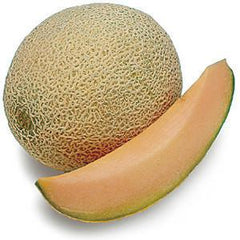CANTALOUPES    M USA