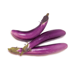CHINESE EGGPLANT FROM USA