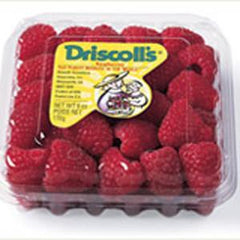 DRISCOLL'S RED RASPBERRIES FROM MEXICO