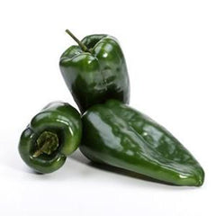 POBLANO PEPPERS FROM MEXICO