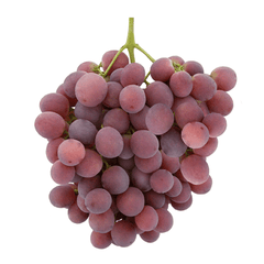 RED GLOBE GRAPES FROM CHILE