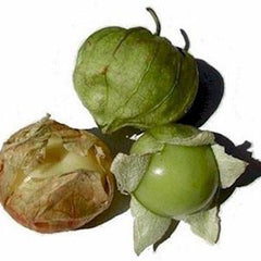 TOMATILLOS FROM USA