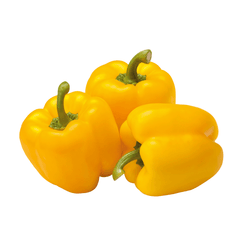 YELLOW HOLLAND PEPPER