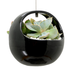 Basket Air Planter, Glossy Series
