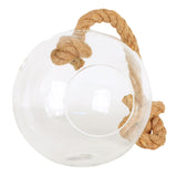 Hanging Glass Sphere Terrarium