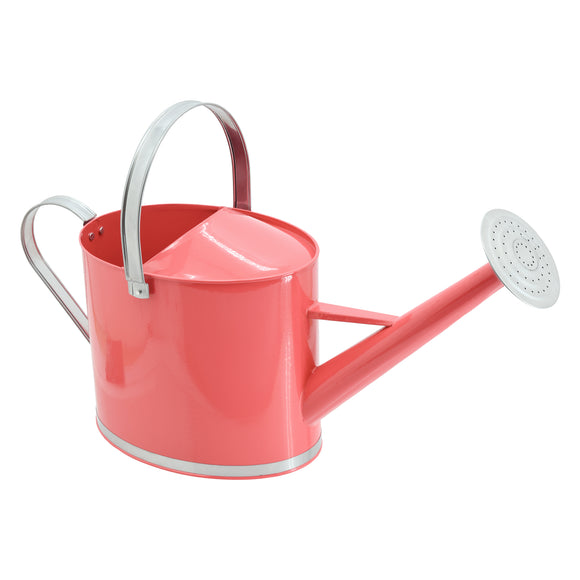 Chic Metal Watering Can