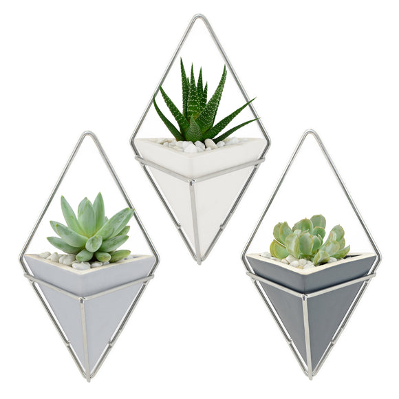 Diamond Wall Planter, Matte Series