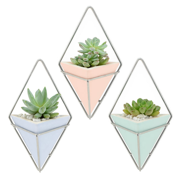 Diamond Wall Planter, Pastel Series