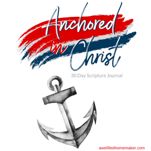 Anchored In Christ - Journal Through The Bible